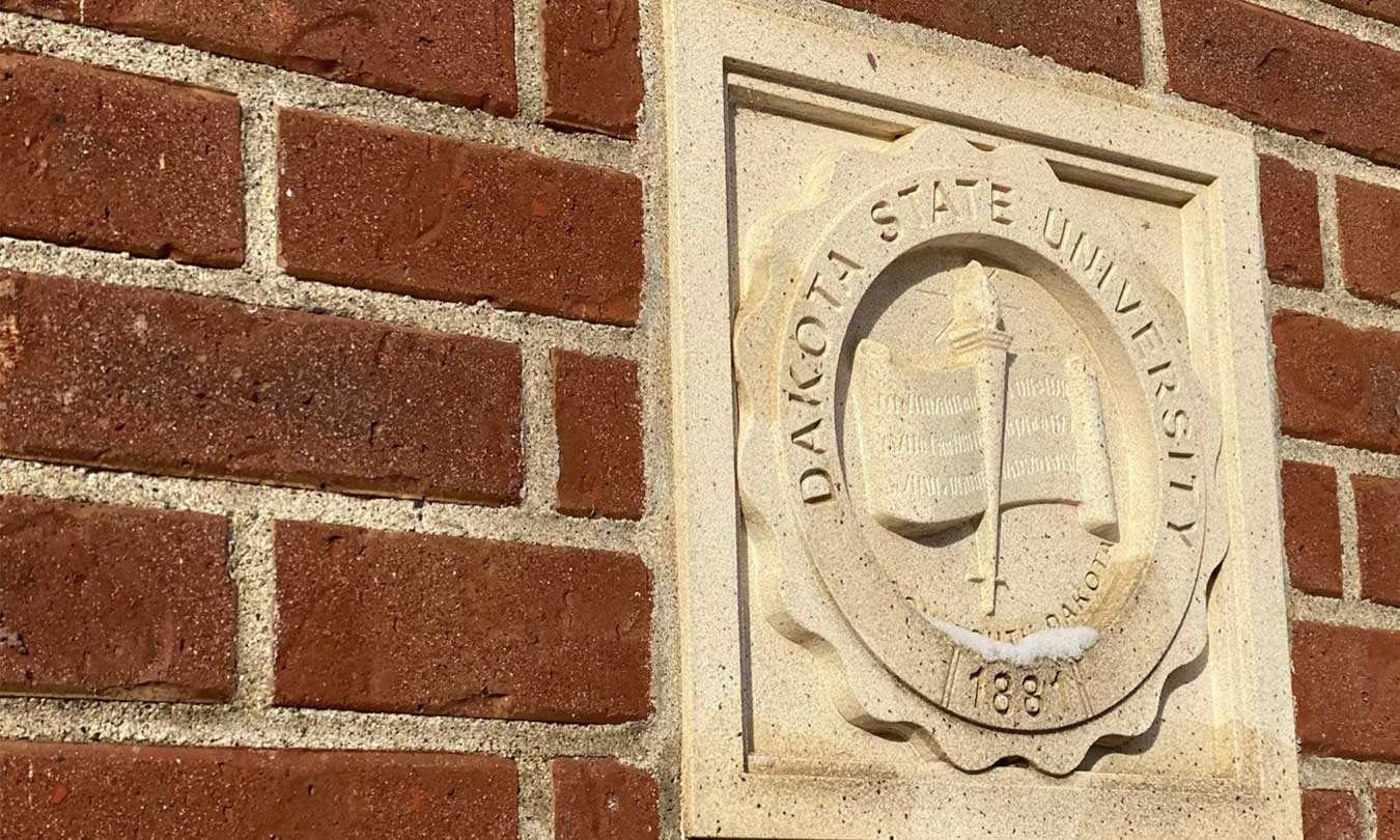 DSU seal on one of the main pillars of the campus arch