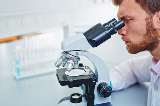 Chemistry minor student looking into a microscope